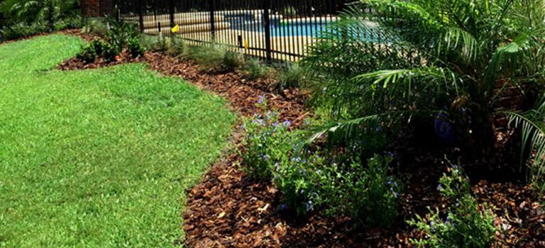 Orlando Landscaping Services Carroll Bradford Inc